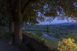 Volognano • landscape