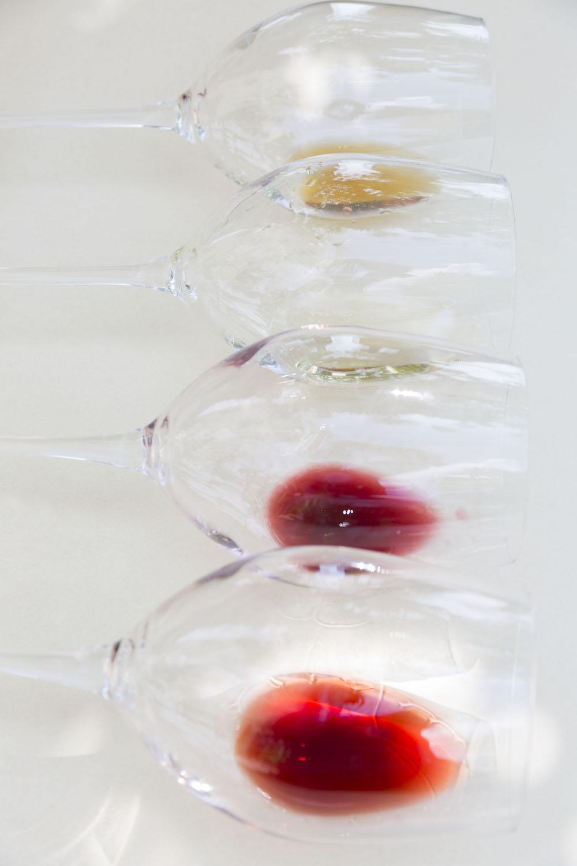 Volognano • vini
