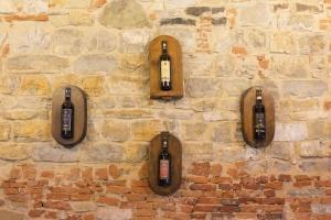Volognano • the cellar