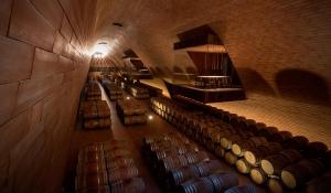 degustazione vini nel chianti