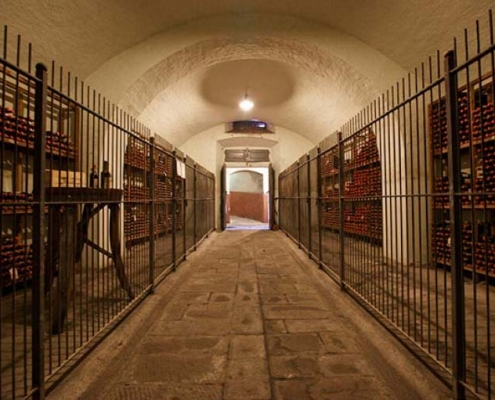 Best wineries in Tuscany - Capezzana