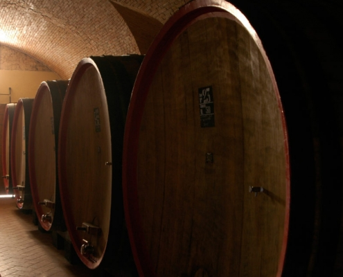 top wine tasting tour pisa - tuscany