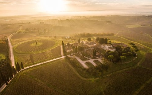 best wineries in tuscany - Avignonesi