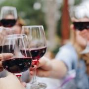 best wine tasting