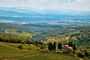 Da Siena a firenze: castellina in chianti