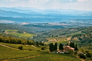 Siena to Florence: Castellina in chianti
