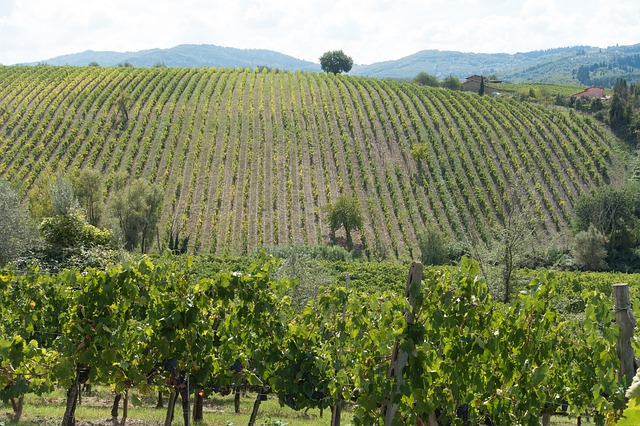 best tasting tours in tuscany