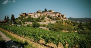 Siena to Florence: greve in chianti