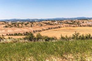 crete senesi - Tuscany Pictures