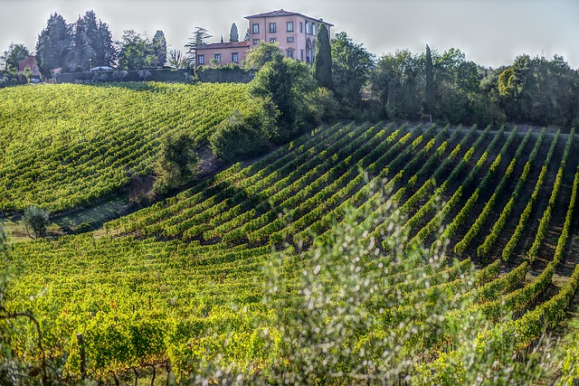 Montalcino - Tuscany points of interest