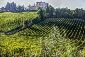 Montalcino - Punti di interesse della Toscana