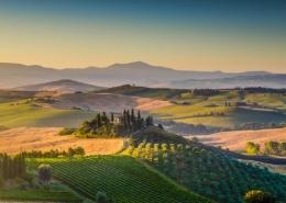 Tuscany drive