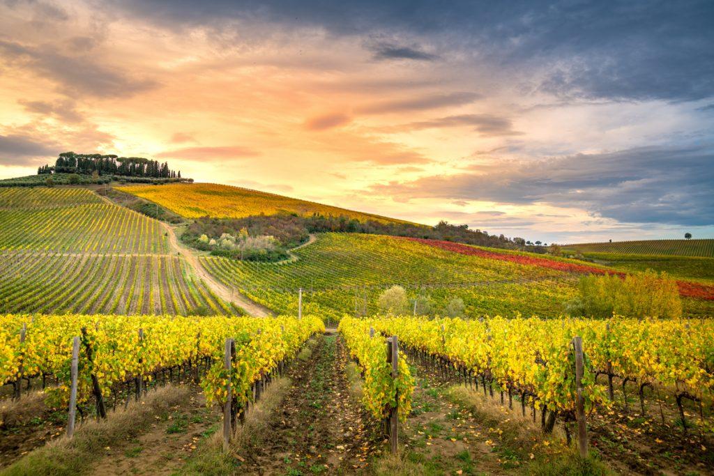 Tuscany drive-Chianti