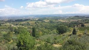 colline toscane - Da Venezia alla Toscana