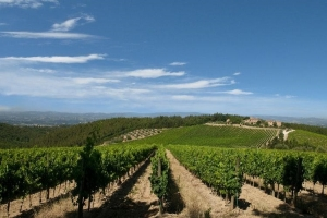 A Month in Tuscany