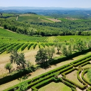 cover-Chianti wine tours from Siena