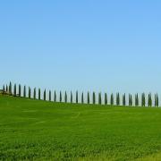 Meravigliosi Tour Toscana